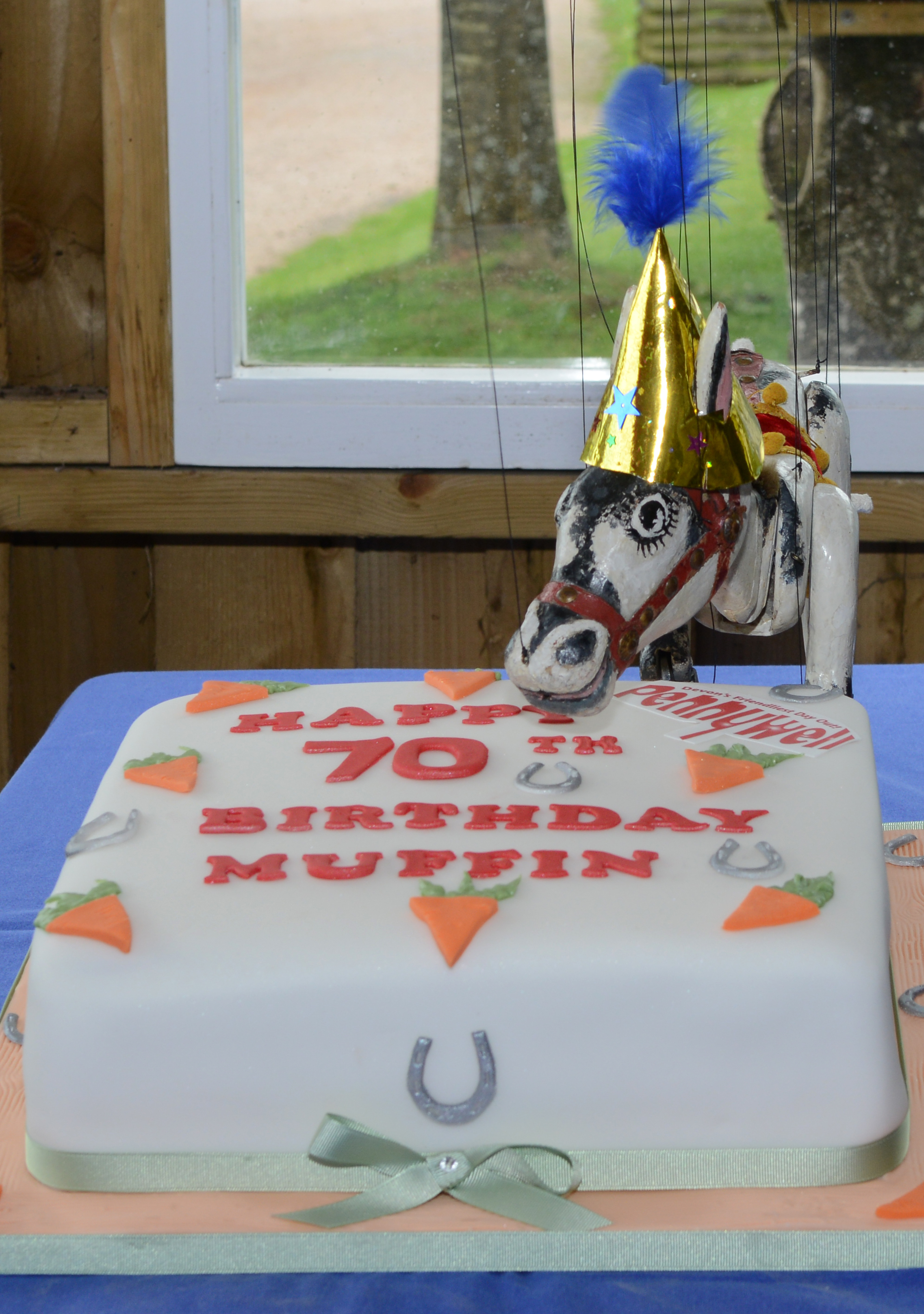 Muffin with his 70th Birthday cake
