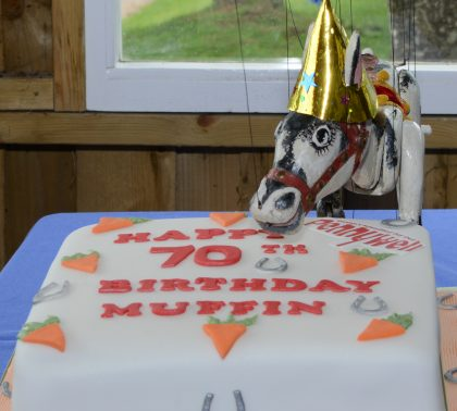 Muffin 70 years old on Sunday 20th October!